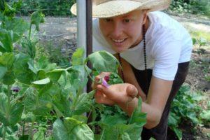 permaculture-garden-flower-karma-yoga-e1540485241922