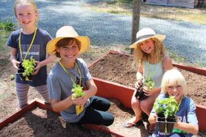 permaculture-kids-camp-garden